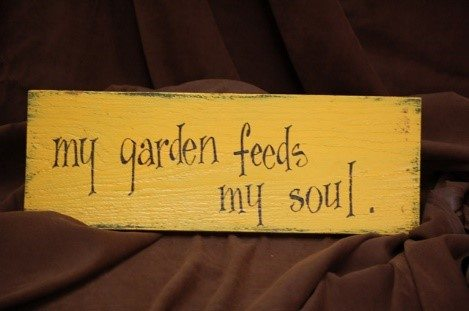 gardening-therapy